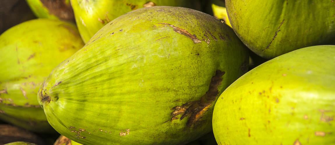 Bild - frische Kokosnuss